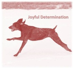 Joyful Determination