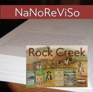 NaNoReViSo2015