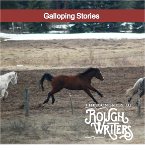 Galloping Stories