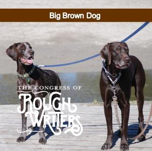 big-brown-dog