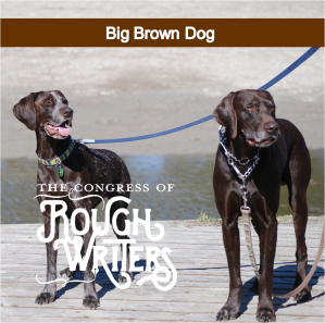 big-brown-dog