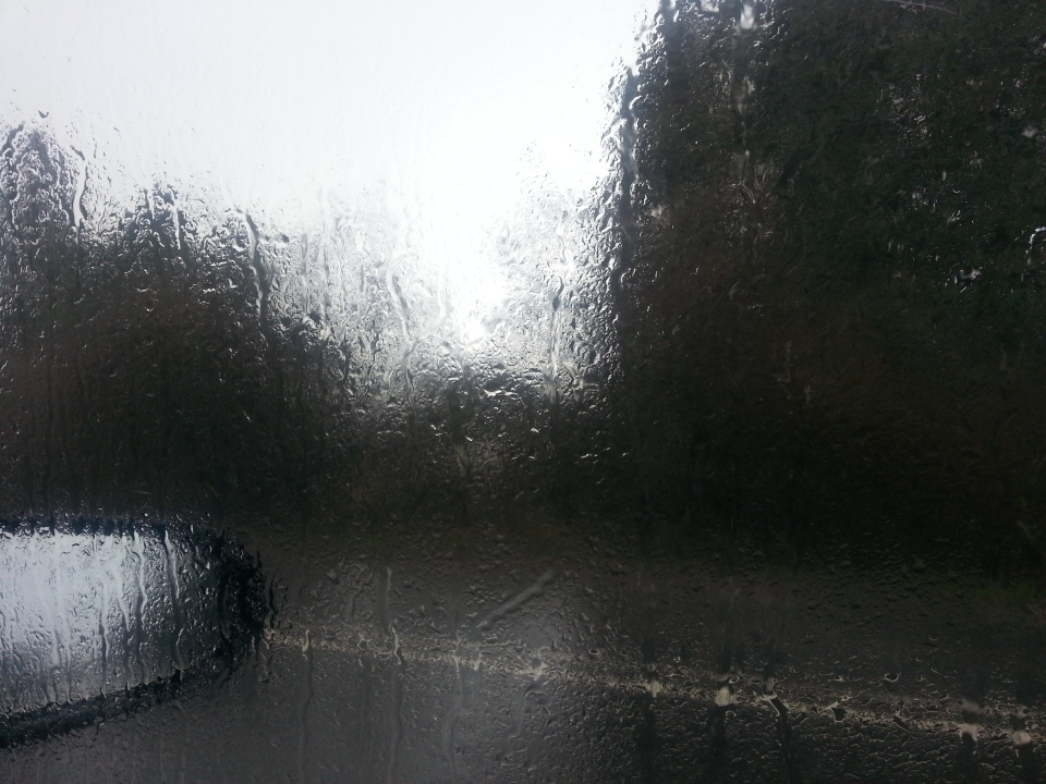 Revision Blues Rainy Day in Somerset by S. Matthews