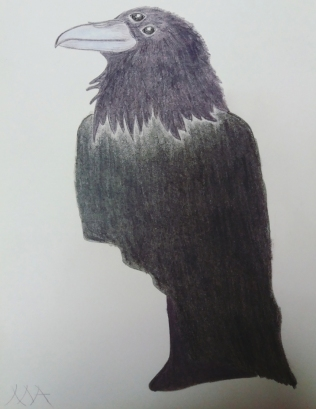 Drawing by Milena, the protagonist of one of Ursula's stories