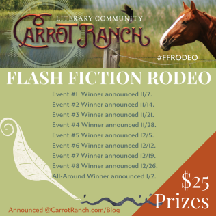 INDV EVENTS FF RODEO(19)