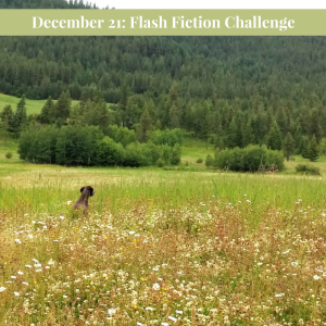 December 21 Carrot Ranch Prompt @Charli_Mills