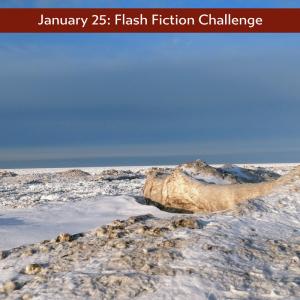 January 25 – Flash Fiction – Edge