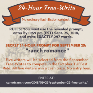 24-Hour writing contest | Carrot Ranch Literary Community