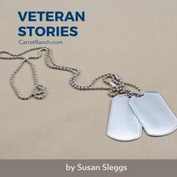 Veteran Stories by Susan Sleggs
