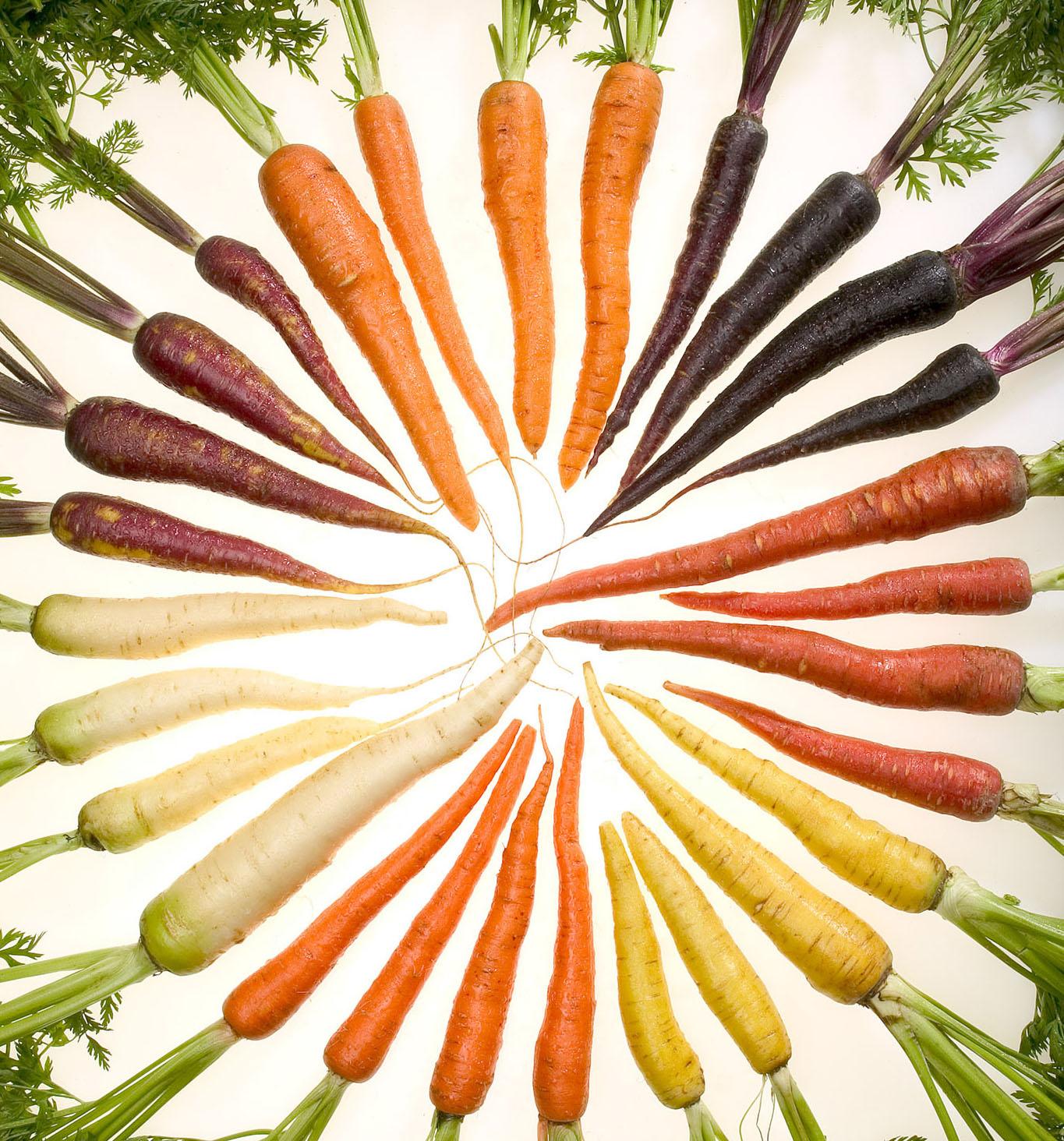 Carrots_of_many_colors_cutout